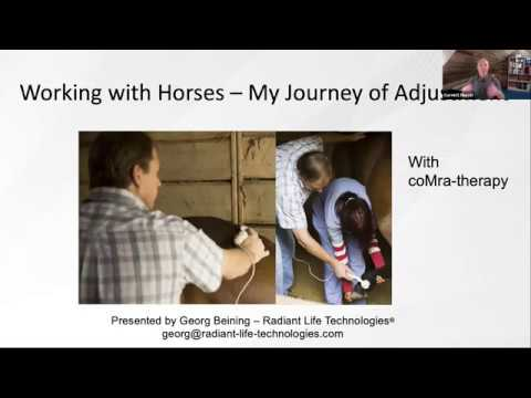 Working with Horses and How to Treat Horse Injuries with coMra therapy